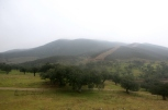 Sierra de Aracena niebla