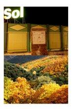 Otoño Soleado - Sunny Autumn